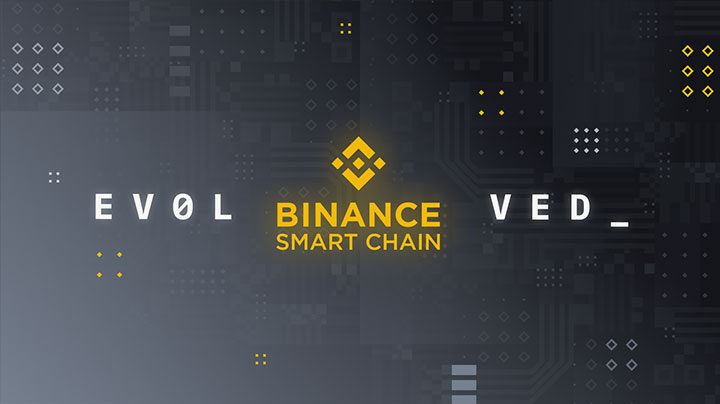какой кошелек поддерживает Binance Smart Chain
